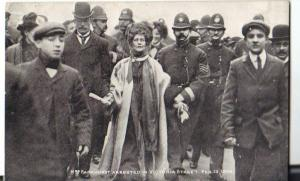 Mrs Pankhurst arrested while leading a deputation to Parliament