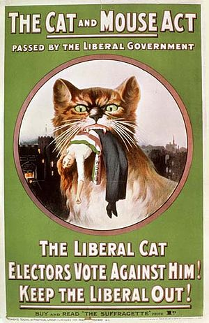 WSPU poster protesting against the 'Cat and Mouse' Act