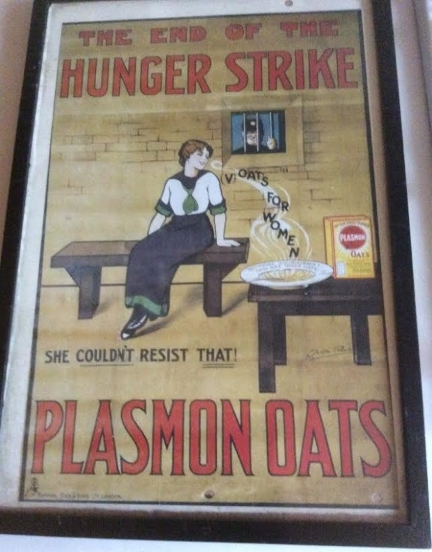 plasmon-oats